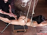 Asian Bdsm Hogtied And Choked Before Toying