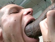 Horny Amateur White Guy Frank Sucks On The Biggest Black Cock He