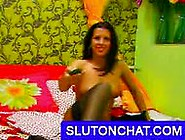 Chat Sex Cam Fucking Hot Pussy