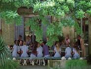Bilitis 1977 Full Movie
