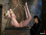Blond Tied Into Modified Category 4 Hogtiedsucks Cock,  Punished