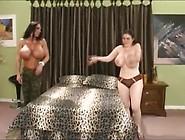 Big Boobs Vs Huge Tits