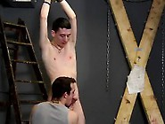 Gay Sex Boys Scout And Monkey Video Dan Spanks And Feeds Ree