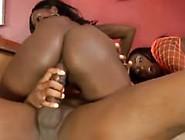 Bbc Orgy
