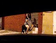 Flagra De Namorados Fazendo Sexo Na Rua