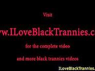 Black Tranny Jerking Off Her Pierced Cock