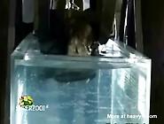 Drowning Fetish