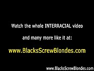 Interracial Slut Blowjob Pussy Oral