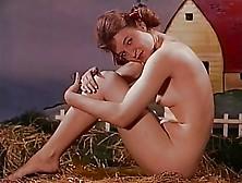 Bacanal de rock hudson en el filme seconds 1966 - 3 5
