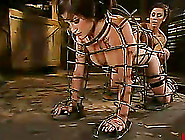 Stacey Stax Gets Beaten And Pulled By The Nipples In Bdsm Clip