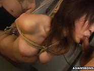 Asian Hanging Bondage Deepthroat Who Is She?