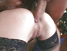 Rampant Rocco Siffredi Pounds This Tart In Her Ass