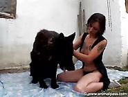 Videos Zoofilia Morena Caseira Brincando Pelada Com Seu Cachorro