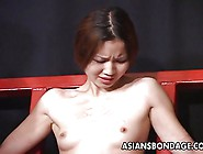 Stunning Japanese Sweety Endures Raunchy Whipping