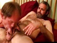 Mature Bears Bj And Handjob At Home