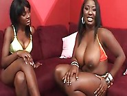 Massive Ebony Tits Jiggle When This Lesbian Girl Muff Dives On H