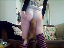 Petplay Butt Plug Shaking Cat Girl