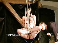 Asian Amateur Bondage And Tit Tortures Of Suspended Kumimons