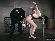 Restrained Brunette Gets Her Cunt Fucked Hard By Crazy Sex Machi