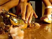 Fire, October, Katrina (Usa) Vs Helpless Lobster