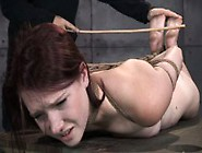 Tied Up Bdsm Lover Ashley Lane Caned
