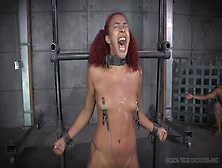 Tears Flow From Her Eyes In A Painful Bdsm Scene