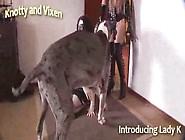 Novinhas Fazem Sexo Com Cachorro Zoofilia Free