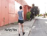 Hairy-Witchcraft-Sara-Tonin-And-Harley-Hex-Stream