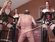 3 Mistresses Cbt Caning Slave