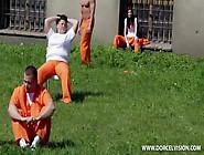 Prison - Wiezienie. Dvd. 2014