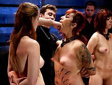 Crazy Bondage Porn
