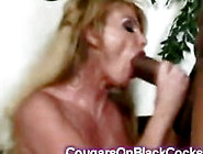 Big Stacked Milf Fucked By Huge Black Dick Swallows The Cum