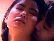 Pink Lady - Chinese Lesbians