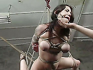 Awesome Brunette Nielle Gets Multiple Orgasms In Bdsm Video