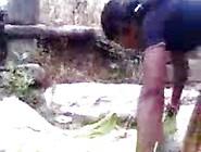 Rajsthani Orignal