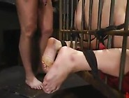 Stunning Hard Core Xxx And Rough Domination And Roped For Blonde