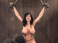 Bigtitted Mature Lisa Ann Having Domination And Bound About Dild