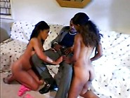 Two Awesome Brunette Ebony Bitches Suck Big Black Dick