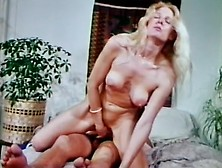 Desiree cousteau paul thomas in spying on a fucking couple - 2 3