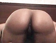 Nibblz From Flavor Of Love Porn Videos Pornhubcom