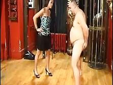 Damiana Im A Testicle Kicker