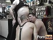 Three Chubby Leather Bears