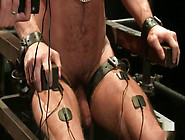 Gay Sex Slave Humiliated And Punished
