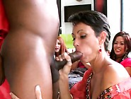 Amateur Wife Blowing Strippers Bbc At Party