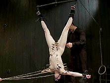 Upside Down Suspension For A Sizzling Siren Juliette