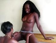 African Black Lesbians - 2 Horny Amateur African Lezzies Fuck