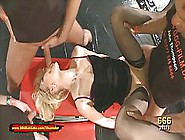 Blonde Bitch Is Sucking Two Hard Cocks,  At The Same Time,  For A