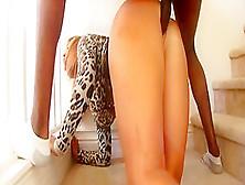 Best Pornstar Mellanie Monroe In Amazing Big Tits,  Cumshots Adul
