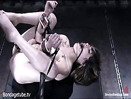 Brunette Stacey Stax Is Tied And Pegged.