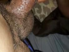 pornbros